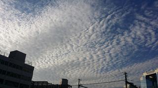 大阪の空です~~