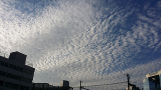 大阪の空です〜〜