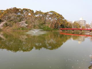 茶臼山の池に掛かる赤い橋