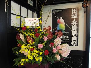 綺麗なお花や!